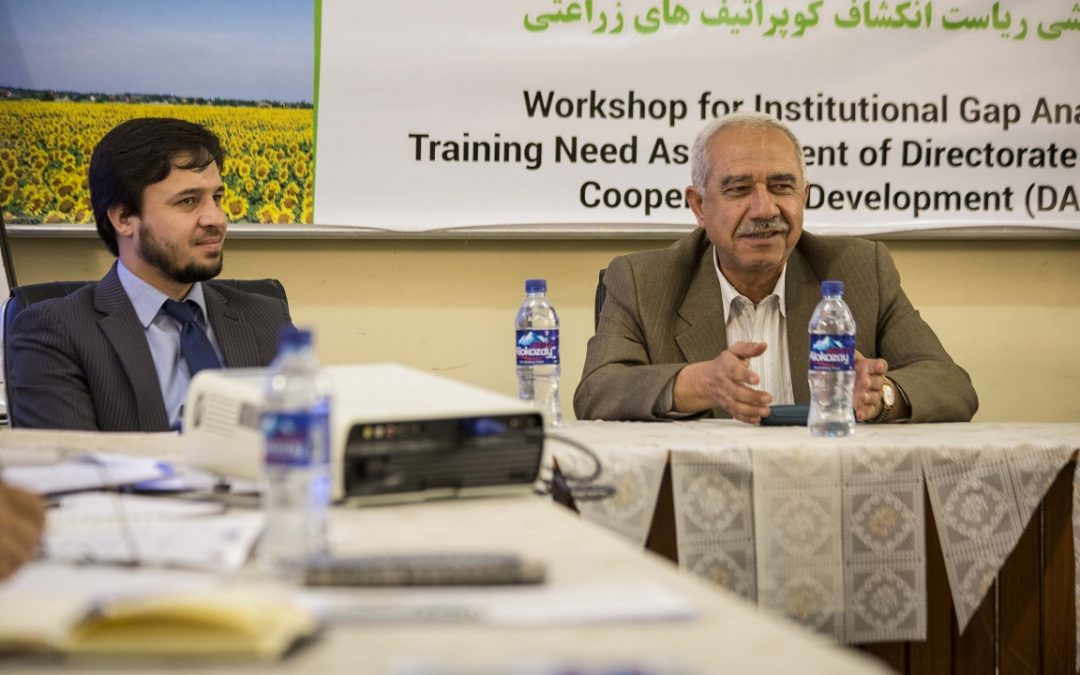 Carry out an assessment of Directorate of Agriculture Cooperatives Development (DACD)'s institutional capacity to deliver on its mandate, responsibilities and functions.