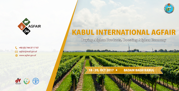 Organizing, management and mass media coverage of International Agfair 2017