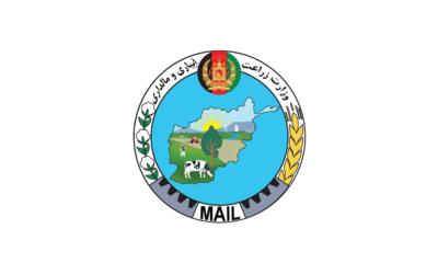 MAIl-400x250