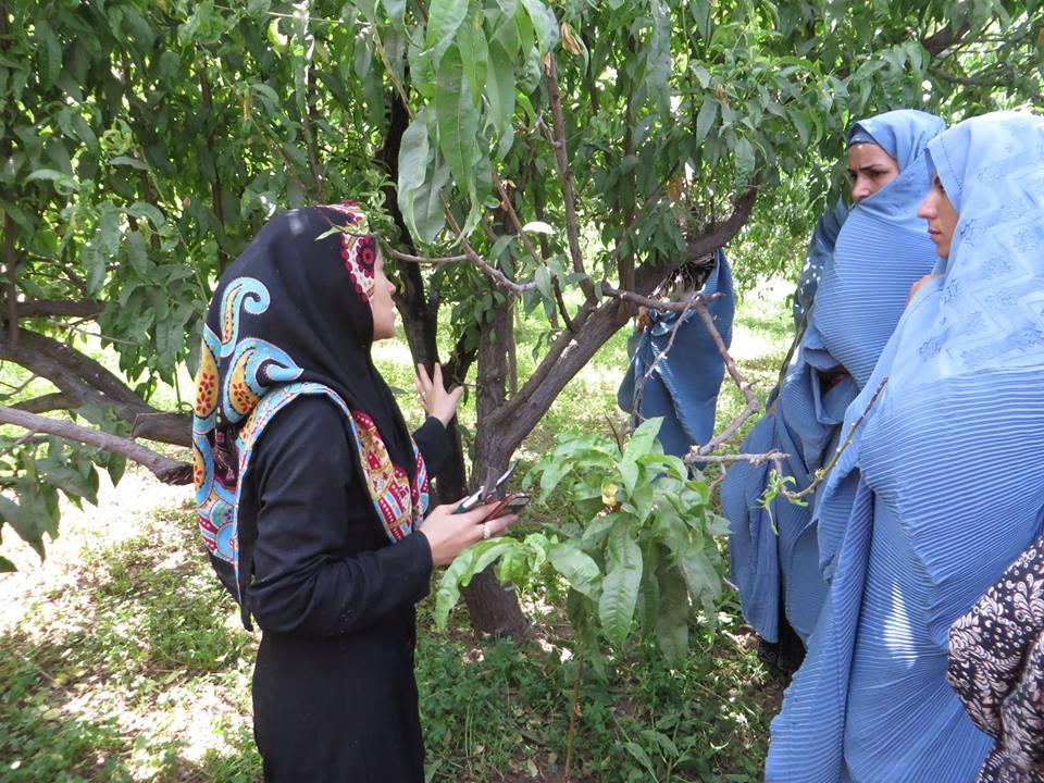 Orchard-Training-200-Female-3