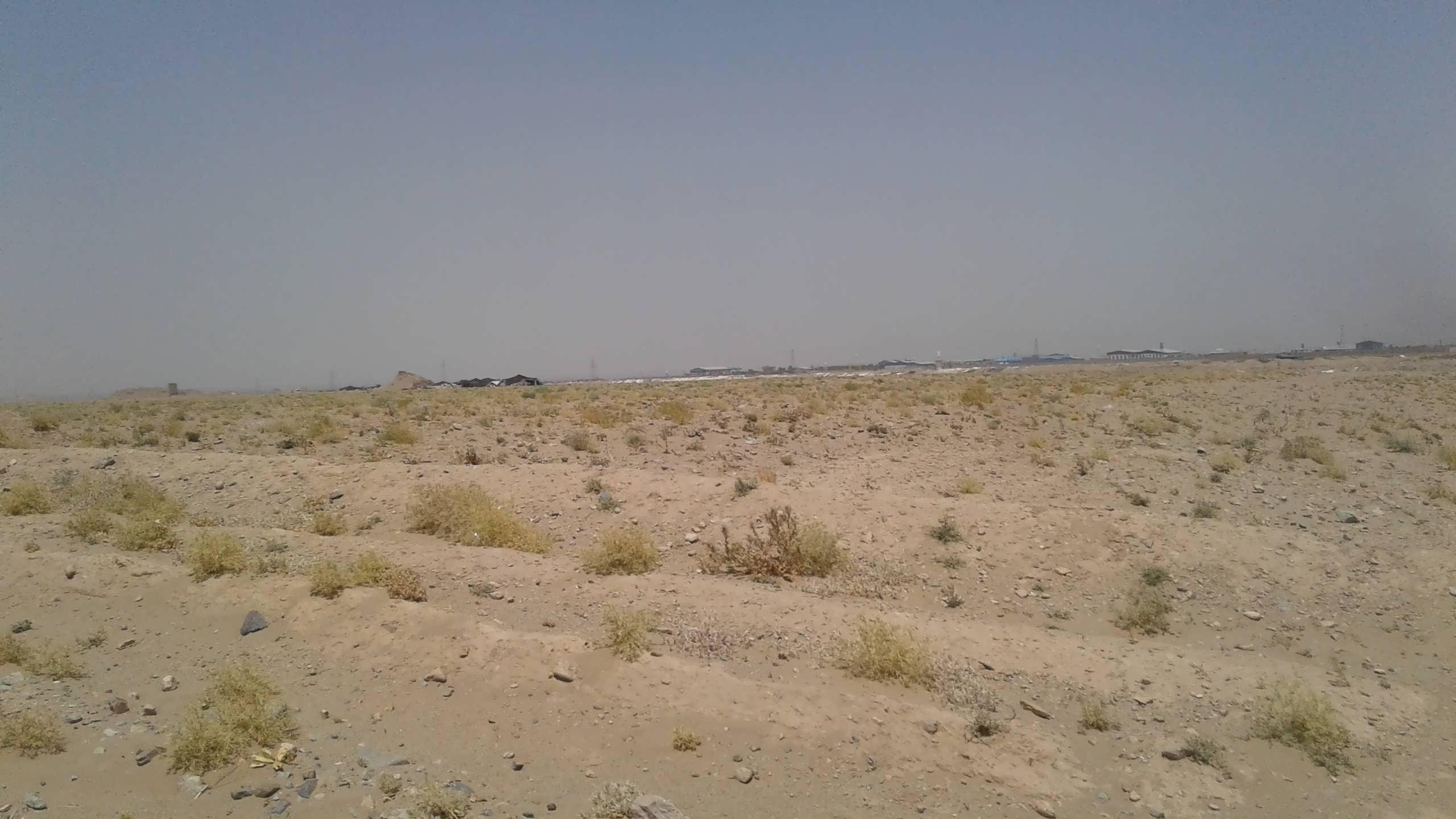 kochies-near-the-site